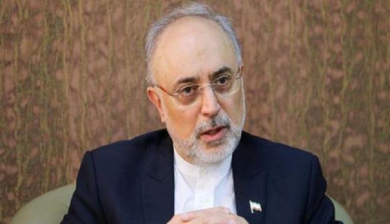 کاندیداتوری علی اکبر صالحی؟