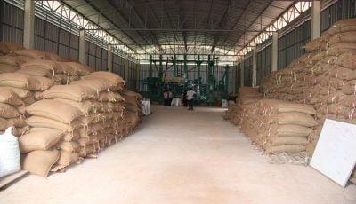 کاهش هشداردهنده ذخایر برنج و شکر