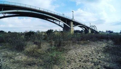 نامه بیش از ۵۰۰ استاد و کارشناس درباره بحران آب خوزستان/ شیوه حکمرانی  آب تغییر کند