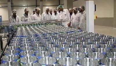 پیشنهاد افزایش ۶۰ درصدی قیمت شیرخشک!/ خط تولید برخی کارخانجات متوقف شد